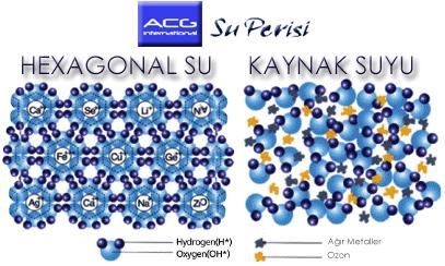 hexagonalsu2